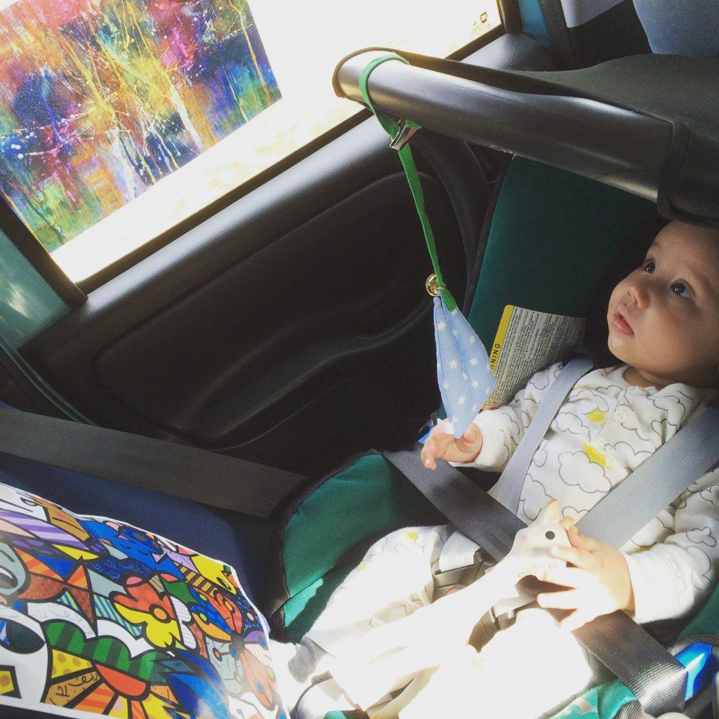 Lino im Auto